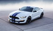 front, white color, blue stripes