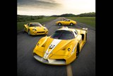 Photoshoot: Bachman's Collection of Yellow Ferraris [w/ video]