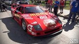 2014 Gumball 3000 Full Grid Walk and Start Event